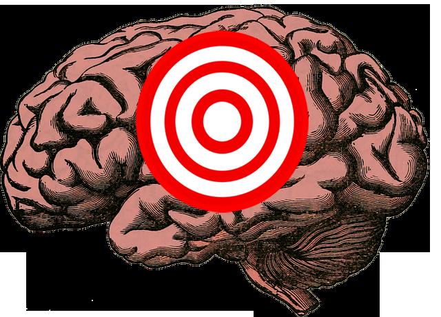cerveau-cible